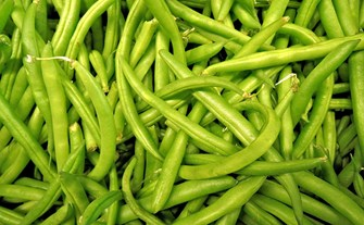 Green bean Flav 635420